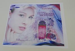 Flagge Tuch Banner gedruckt von 1,6 m (5 Fuß) Eco-Solvent-Drucker WER-ES160 4
