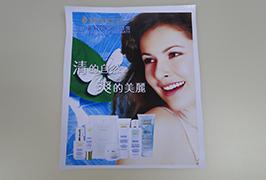 PVC-Banner gedruckt von 3,2 m (10 Fuß) Eco-Solvent-Drucker WER-ES3201