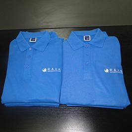 Polo-Shirt bedruckte Druckprobe von A3-T-Shirt-Drucker WER-E2000T